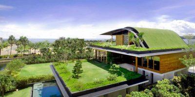Как разбить сад на крыше